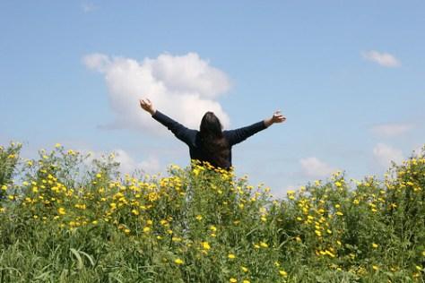 Freedom #2