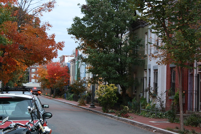 A pretty DC street