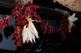 The Hungarian Paprika