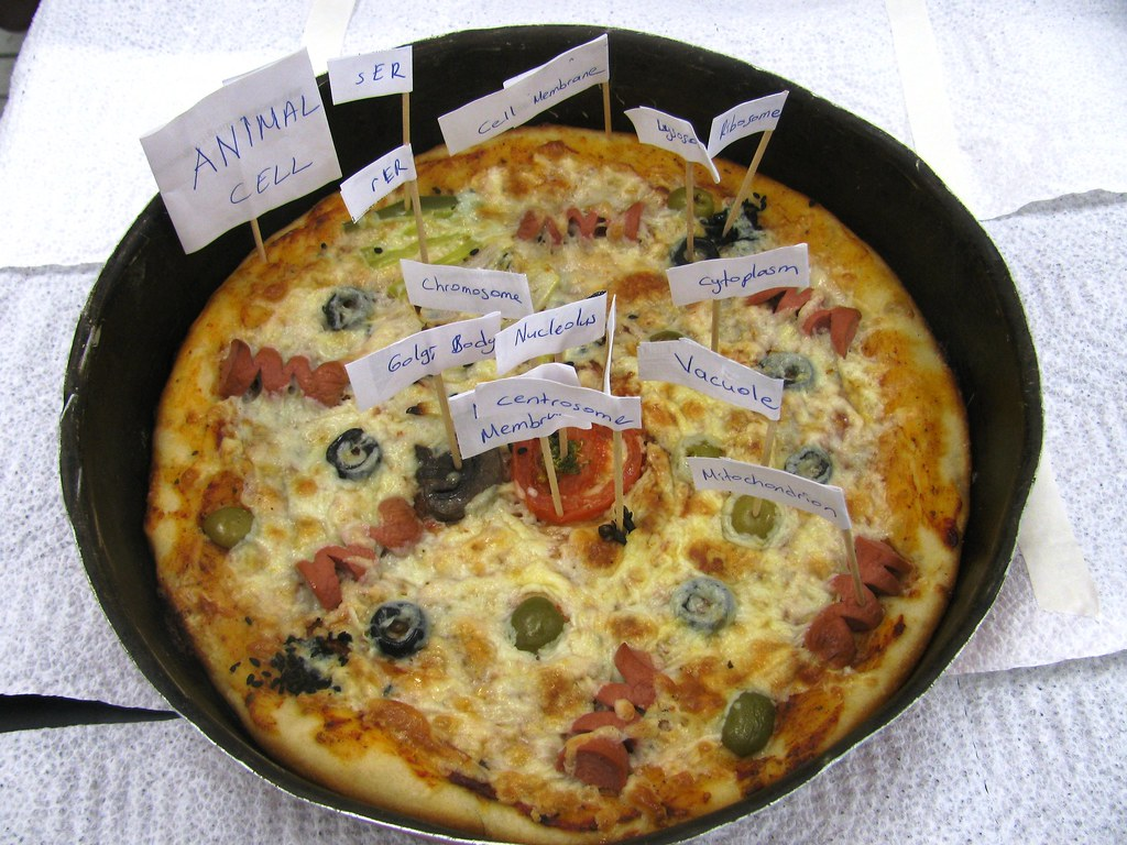 Edible Cell Project Pizza