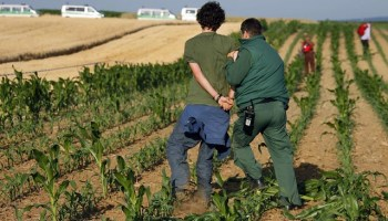 Protester against GMOs arrested in Germany