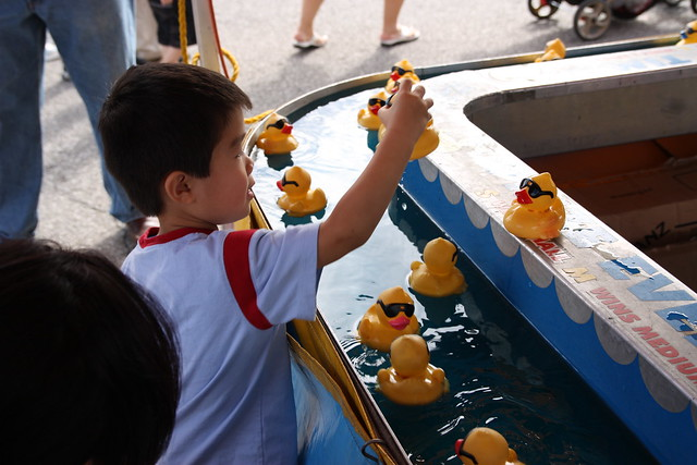 Pick Up Ducks A Gallery On Flickr