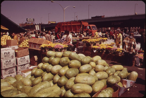 Fruits and Flowers at the Outdoor Market in Haymarket Square 05/1973