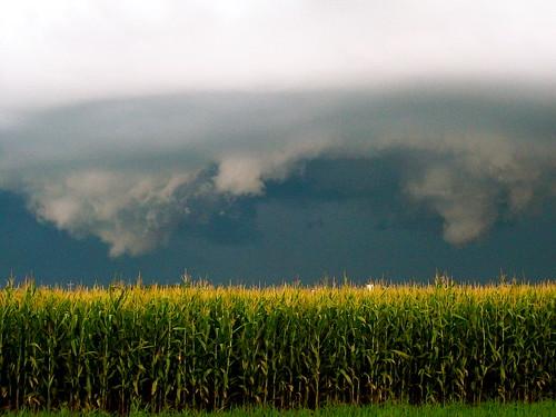Storm Over Corn 3