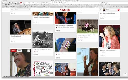 WILD Pinterest screen shot 3