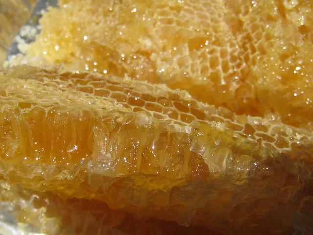 San Mateo Honey Comb