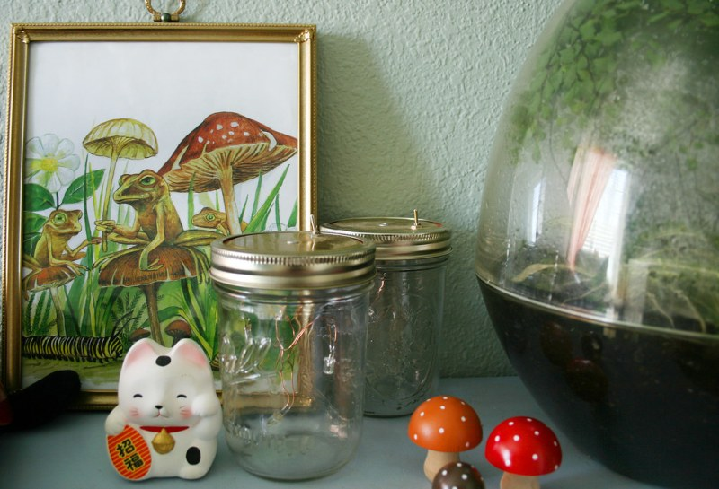 Terrarium Shelf