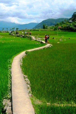 Trekking Banga-an Rice Terraces