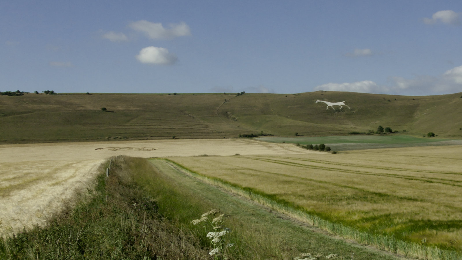 White Horse and Crop Circle