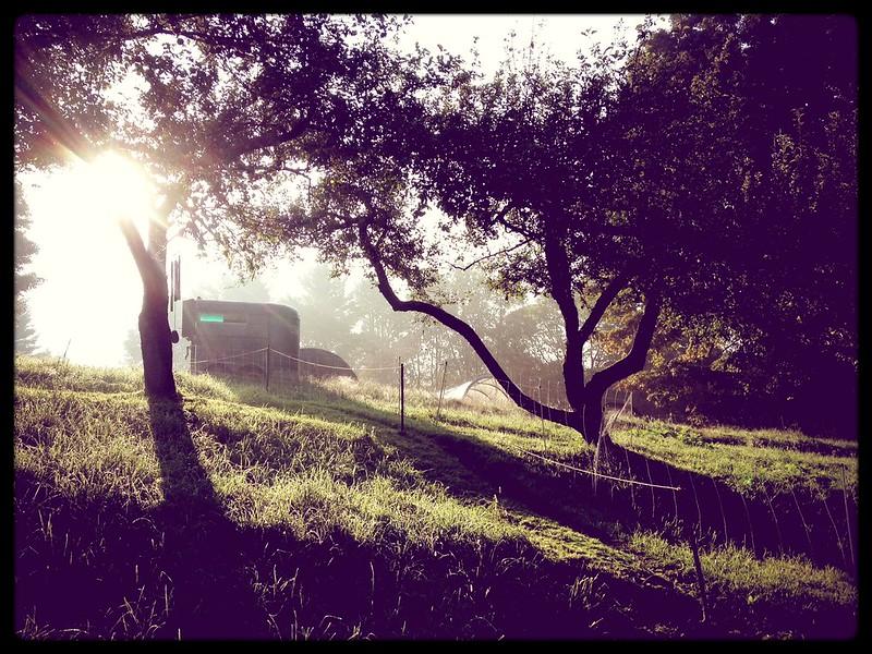 Beautiful Brookfield Morning4