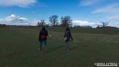 Studley Royal Deer Park, walk with Cole and Bailey. Sunday 23rd March 2014