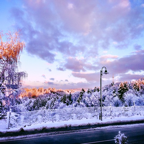 Winter Wonderland by SpatzMe