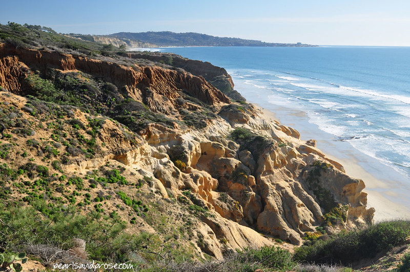 torrey_pines_cliffs_web