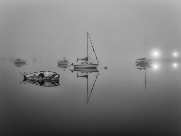 Foggy morning harbor