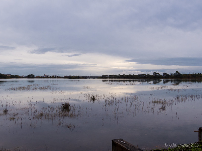 Upton Lake from the old bird hide