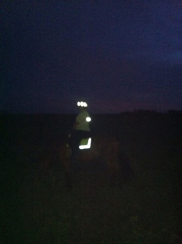 Wiz and I donned our hi-viz gear for our nighttime Supermoon trail ride with Kris and Cathy in the Assunpink