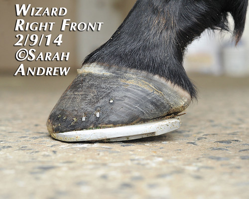 Wizard's New Shoes