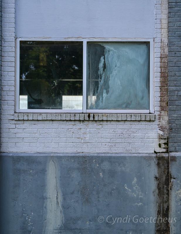 cjane dirty windows