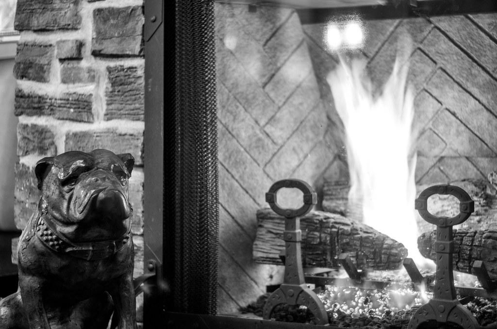 Bad Dog Fireplace