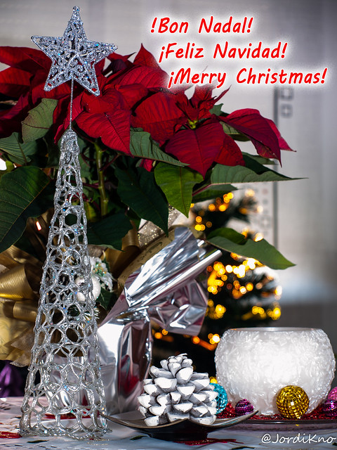 Bon Nadal - Feliz Navidad - Merry Christmas
