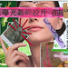 Relationship LXV - Mail Art Postcard
