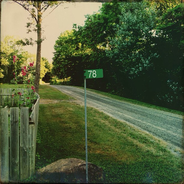 July 18 - number {the number at the end of my drive} #fmsphotoaday #number #fence #road #princeedwardcounty #morning