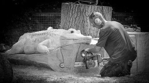 Chainsaw Carving by Stavros043