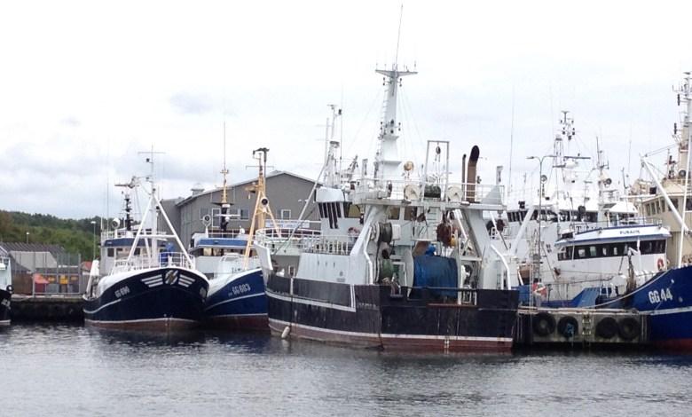 fiskeback12juli_2015-3 - 9