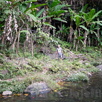 03 Viajefilos en Laos, Bolaven Plateau 21