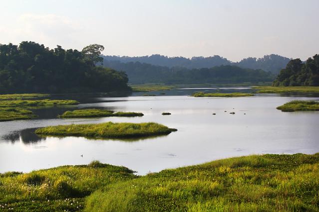 Crocodile Lake - Nam Cat Tien National Park