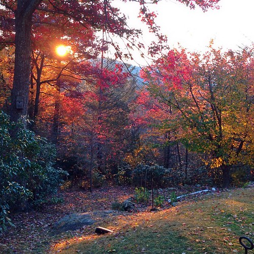 Sunrise at my friends home in the mountains. Such a lovely place, a good excuse to find a show so I can visit again. Very thankful to have such wonderful people in my life.