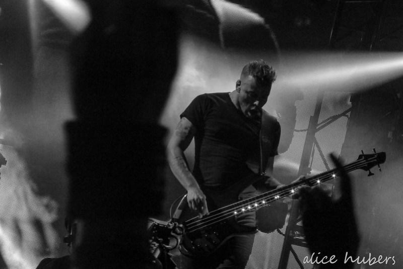 BBK 2015 Muse