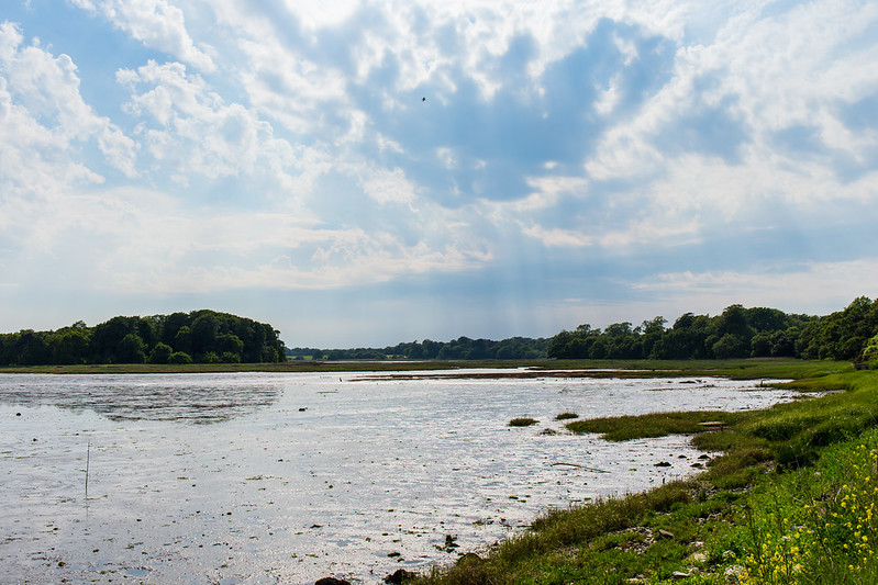 View towards Pergins Island and Upton Country Park