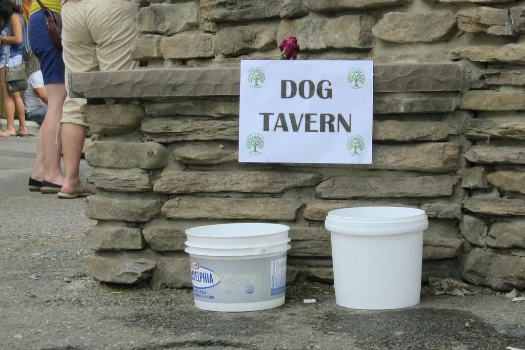 Dog tavern