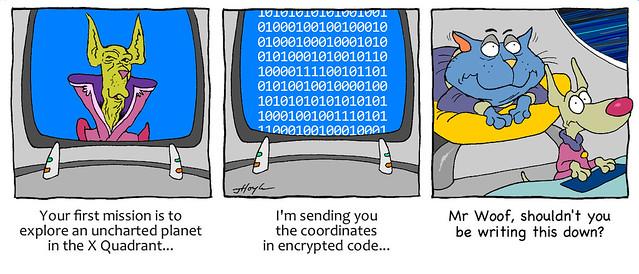 Catnip's cryptic coordinates