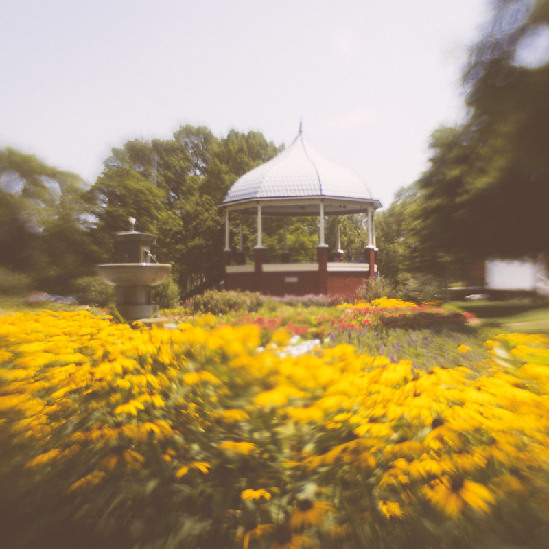 Gazebo Daisy Field Trina Baker Photography Kansas