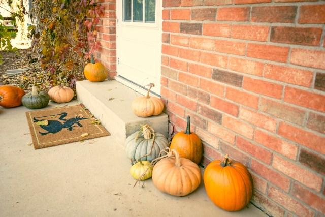 Pumpkin Loot.
