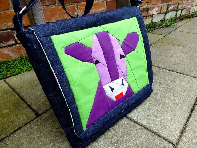 Bethany's Messenger Bag 009
