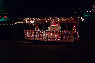 Pacolet Christmas Lights-003