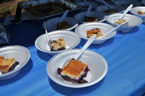 Homemade Blueberry Dessert - Yum!