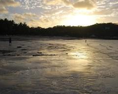 Hamilton Island - Whitsundays