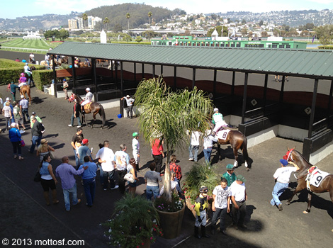 090413goldengatefields06