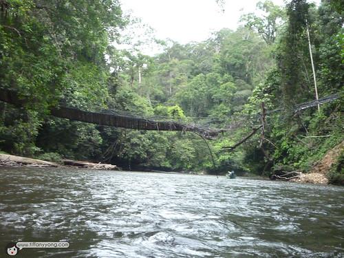 temburong broken bridge