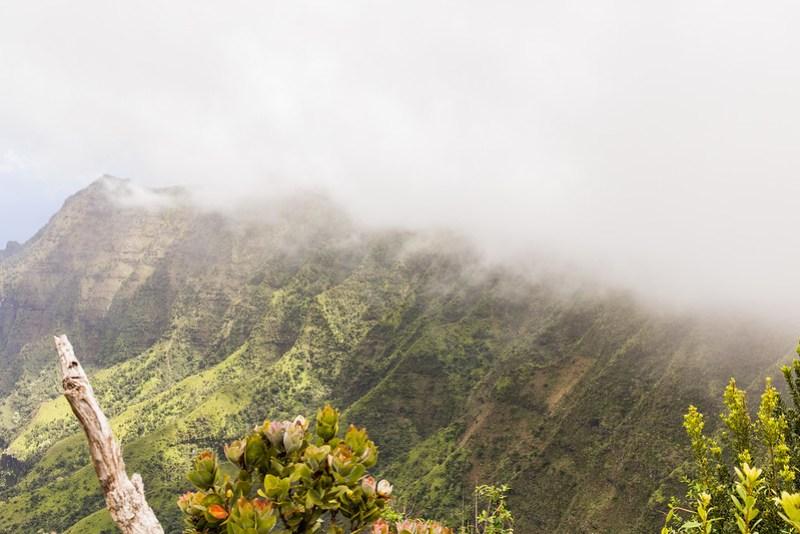 Kauai, l'ïle jardin
