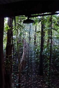 Eungella NP - Platypus Bush Camp