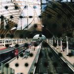 paddington station, no bears