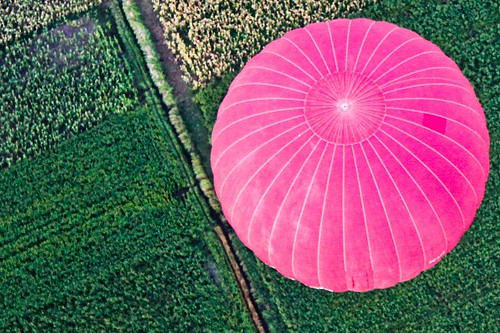 Pink Balooning Egypt by Richard Le Sauvage