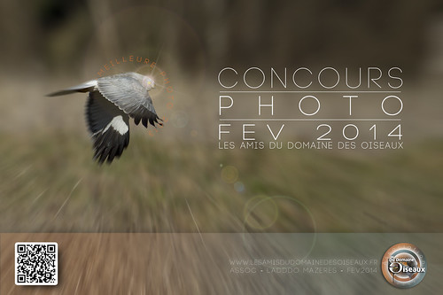 concours-photo-fev2014-a