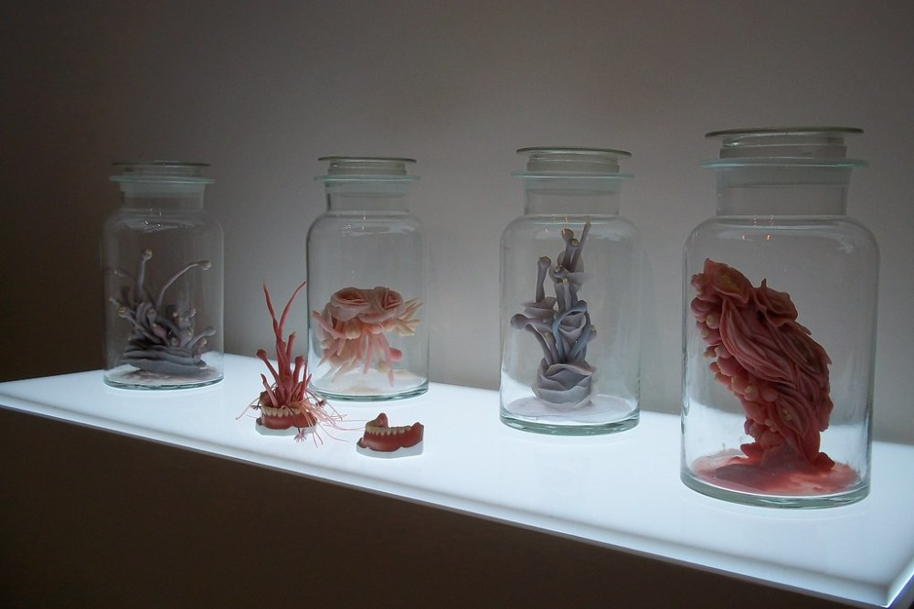 The Incubator – 「生物+科學+藝術」跨領域創作展