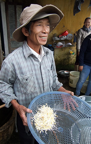 growing bean sprouts in Hoi An